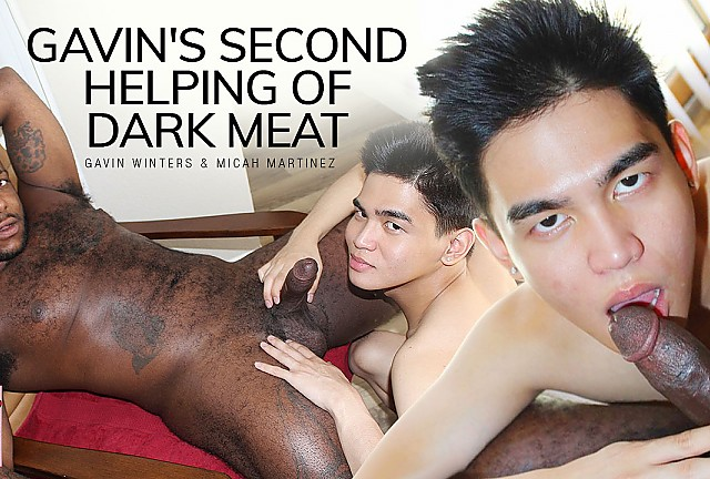 Gavin's Second Helping of Dark Meat